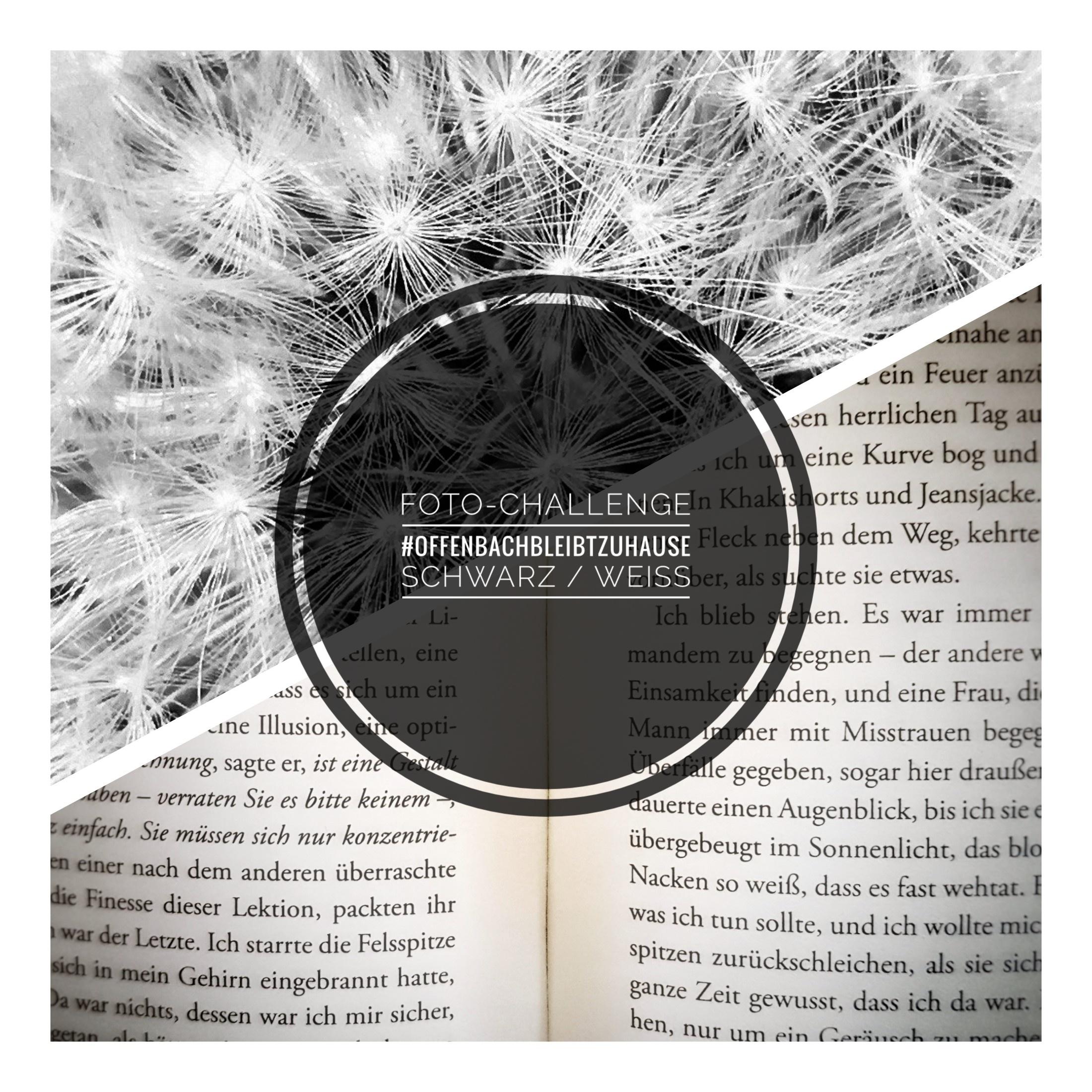 Foto-Challenge Schwarz / Weiß